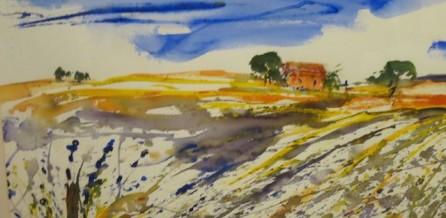 Farbrausch im Lavendelfeld in der Provence