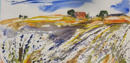Lavendelfeld in der Provence (2)